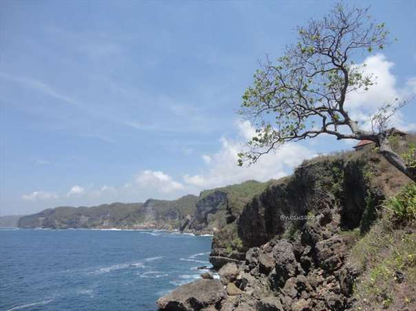 pantai kesirat gunung kidul (42)