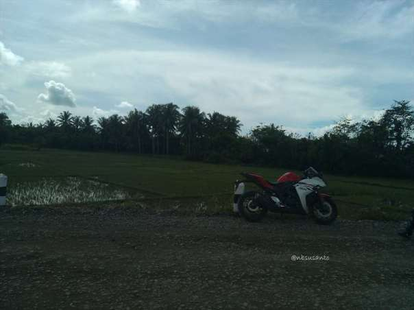 test ride yamaha R25 (30)