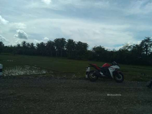 test ride yamaha R25 (30)