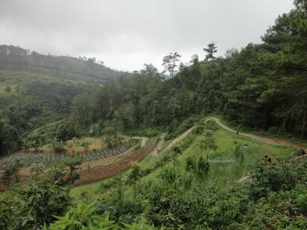 jalan jalan ke candi gedong songo semarang (175)