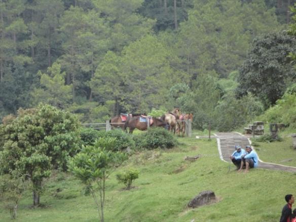 jalan jalan ke candi gedong songo semarang (21)