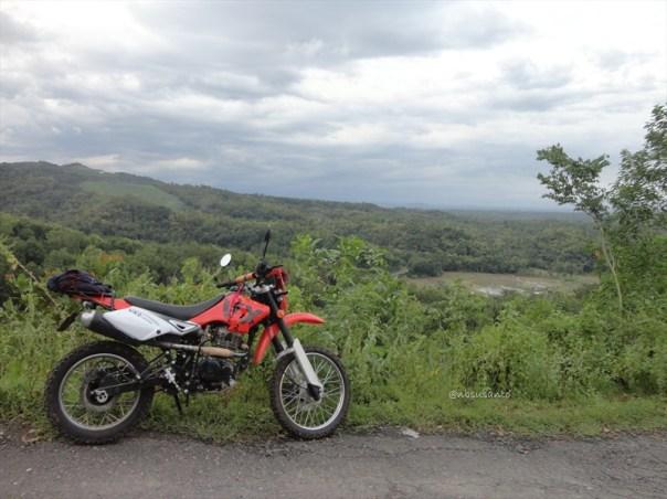 viar vx2 150cc (3)