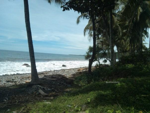 jalur lintas barat pulau sumatera