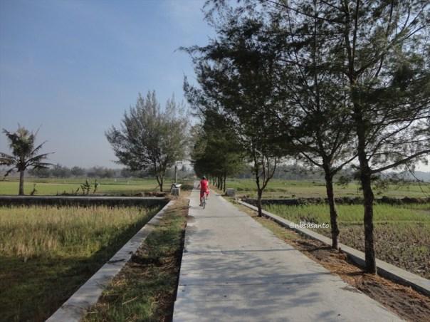 ekowisata mangrove baros kretek bantul (85)