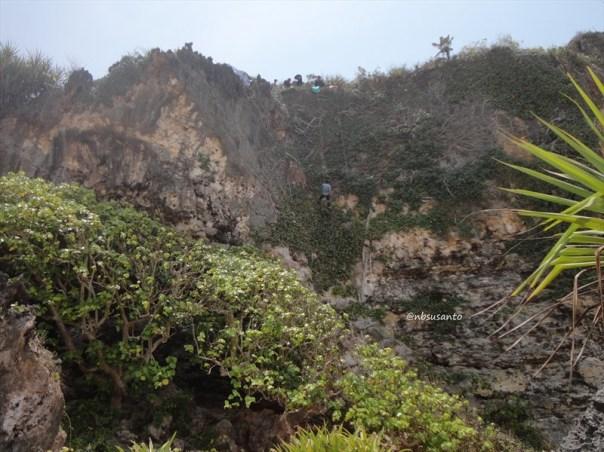 pantai ngrumput, gunungkidul (20)