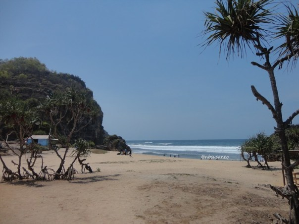 pantai ngrumput, gunungkidul (8)