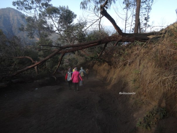 kawah gunung ijen banyuwangi (101)