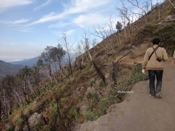 kawah gunung ijen banyuwangi (71)