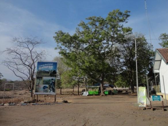 taman nasional baluran banyuwangi, afrika-nya pulau jawa (83)