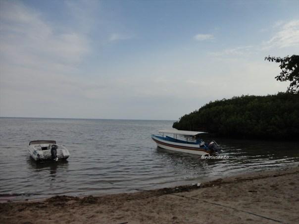 pantai bama, spot menarik lain di taman nasional baluran banyuwangi (12)