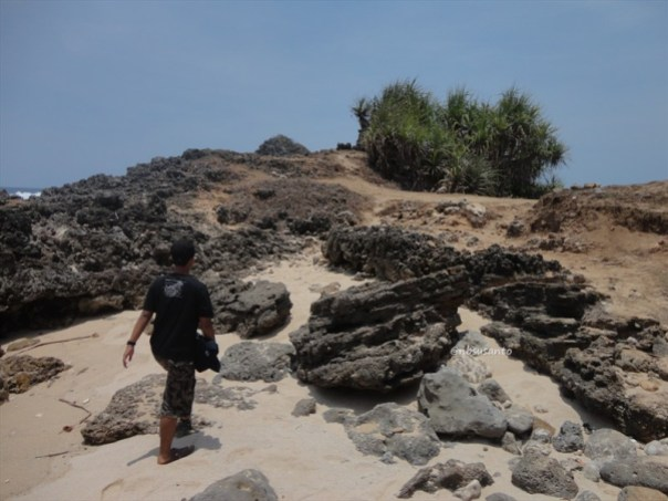 pantai kawasan lemah sangar gunungkidul (25)
