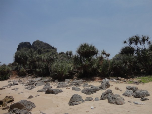 pantai kawasan lemah sangar gunungkidul (8)