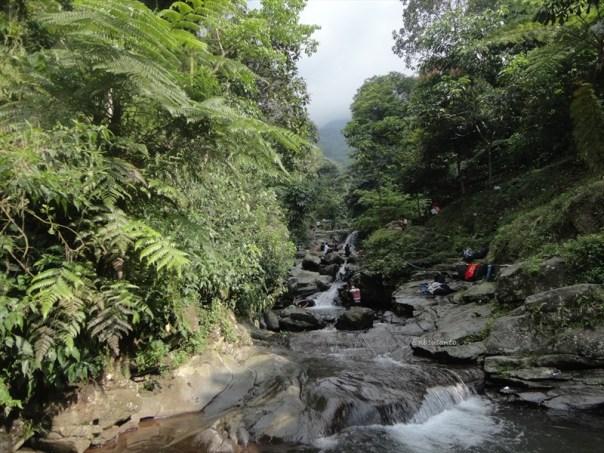 curug nangka taman nasional gunung halimun salak bogor (118)