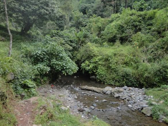 curug nangka taman nasional gunung halimun salak bogor (18)