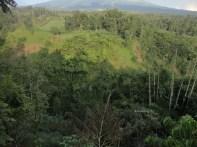 curug air terjun kedung kayang sawangan magelang (73)