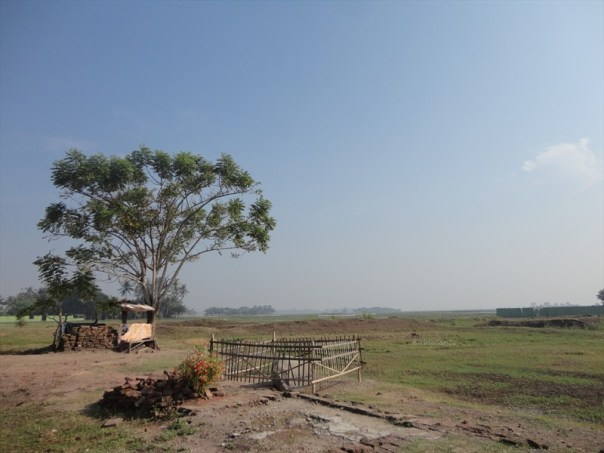 candi-jiwa-blandongan-serut-telagajaya-dan-berbagai-situs-lain-di-kawasan-batujaya-dan-sekitarnya-di-karawang-175