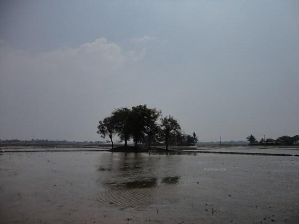 candi-jiwa-blandongan-serut-telagajaya-dan-berbagai-situs-lain-di-kawasan-batujaya-dan-sekitarnya-di-karawang-94
